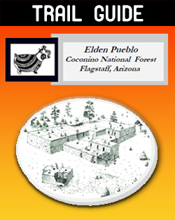 Image of Elden Pueblo Trail Guide