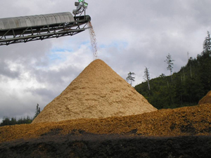 Wood Chip Pile