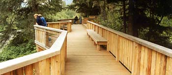 Photograph looking down the length of the Fish Creek wildlife viewing platform. Platform is made of yellow cedar with benches and railing on both sides.