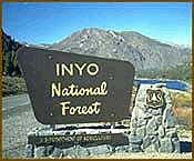 [Photo]: Inyo National Forest sign at Tioga Pass road