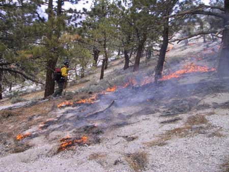 Crater Mtn Fire - June 1st firing operation