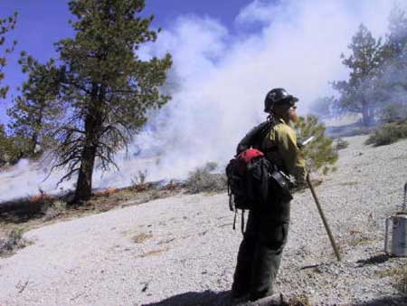 Firefighter, Crater Mountain Fire