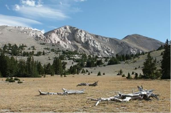 Photo of Mt. Moriah in the Snake Range of Nevada, looking southwest from 'The Table' - Click on the thumbnail to enlarge.