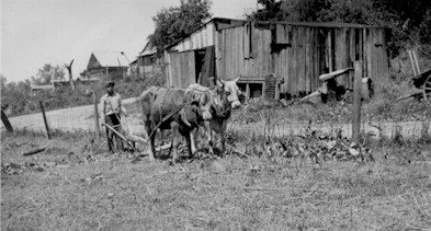 black farmer plowing