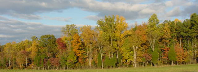fall scene in October 2005