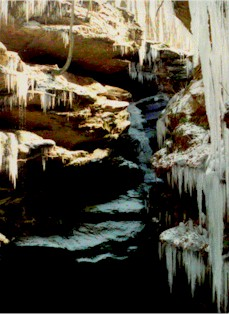 winter icicles at Hemlock Cliffs