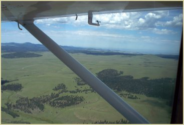 [Photograph]: Aerial view of Apache-Sitgreaves National Forest