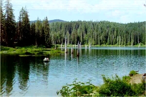 Goose Lake Wa Picture of Goose Lake