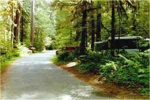 Picture of Iron Creek Campground