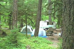 Picture of La Wis Wis Campground