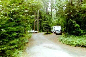Picture of Moss Creek Campground