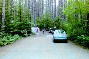 Picture of Lower Falls Recreation Area Campground