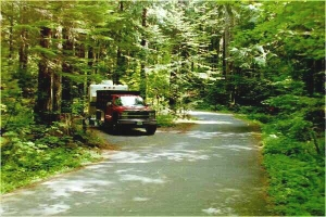 Picture of Paradise Creek Campground