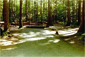 Picture of North Fork Campground