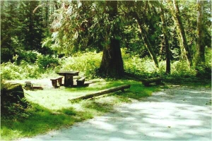 Picture of Tower Rock Campground