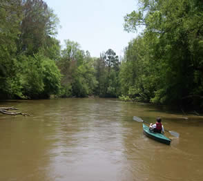 Paddling on  the Enoree Ranger District