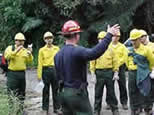 [Photograph]: Group of Puerto Rican Firefighters during a briefing in the field.