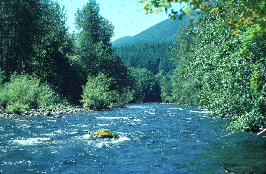 Snider Ridge provides a scenic backdrop to the Sol Duc River in summer.