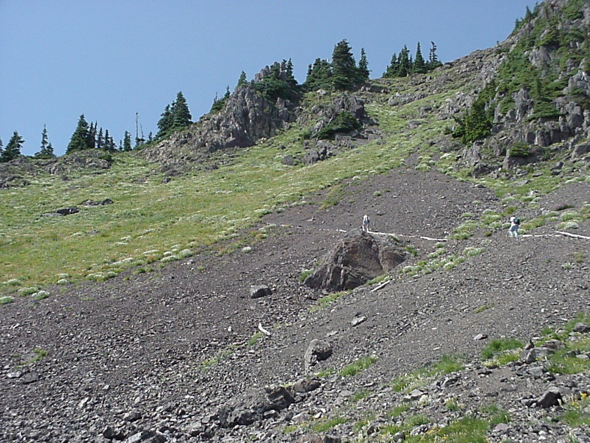 The Mt. Ellinor Trail is one of the most popular trails in the Olympics