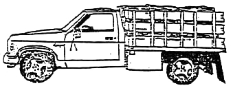 illustration of firewood in a standard 1-ton truck