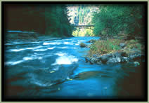 [PHOTO: North Umpqua River looking toward Mott Bridge - Click for larger 2,314 KB JPG - Photo by Mike Hupp]