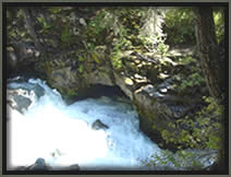 [PHOTO: Natural Bridge on Rogue River - Click for larger 80 KB JPG - Photo by Dale Sandberg]