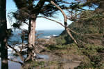view of pacific ocean from cape perpetua visitor center