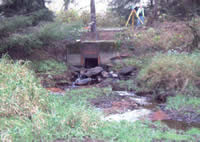 Photo showing Rowdy Creek before culvert replacement