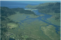 aerial view of salmon river estuary
