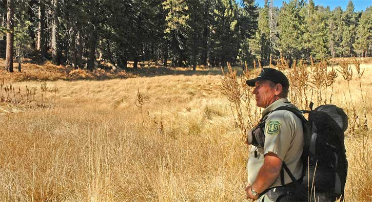 Forest Service Volunteer Association, Volunteer Ranger patrols and assists forest visitors near Skunk Cabbage Meadows in the San Jacinto Mountains.  Photo courtesy of Brad Ells