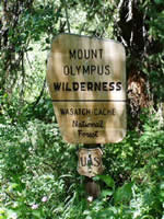 Photo of a Mount Olympus Wilderness sign.