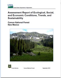 Cover of Forest Plan Revision