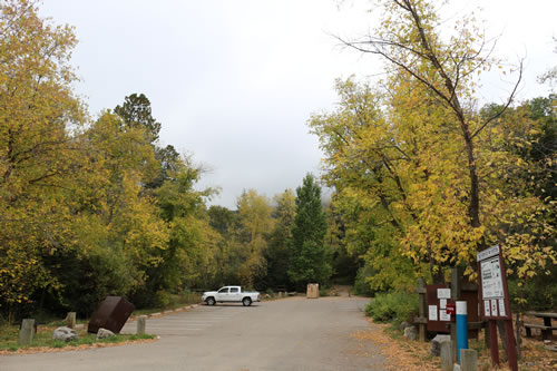 Fall Colors on the Cibola