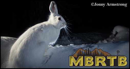Rabbit, Winter MBRTB logo, 2015