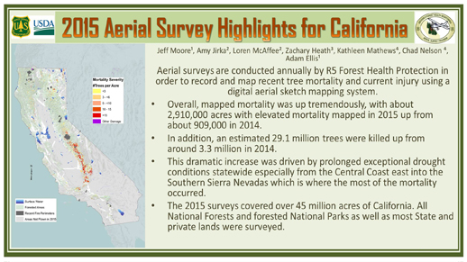 Aerial Survey highlights, 2.9 million acres elevated mortality, 29.1 million trees killed, and a map showing mortality