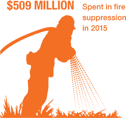 $509 million spent in fire suppression in 2015.