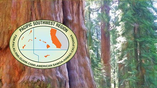 Landscape photo of forest overlaid by an emblem illustrating California and the Pacific Islands.