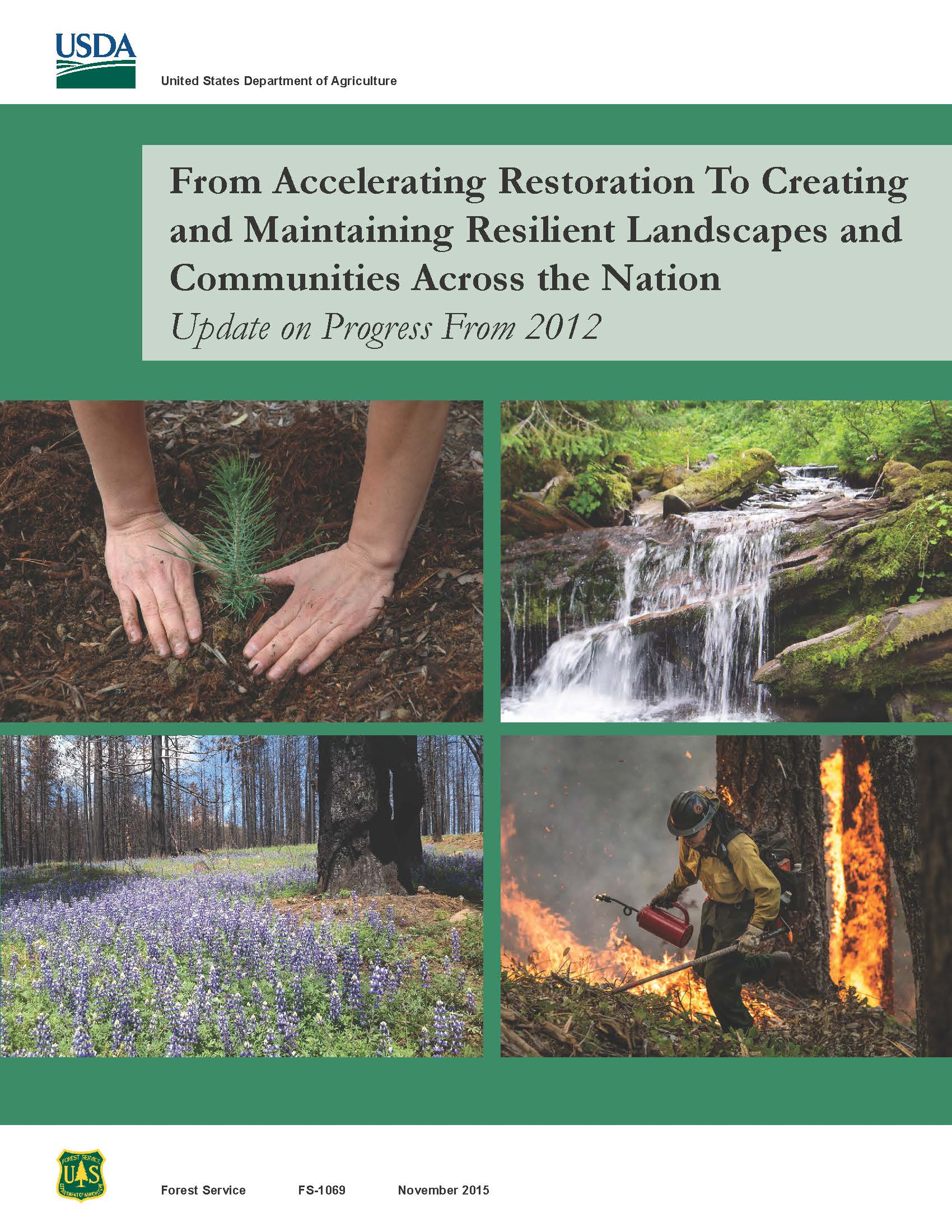Pictures of tree planting and landscapes. Cover to plan for Accelerated Restoration