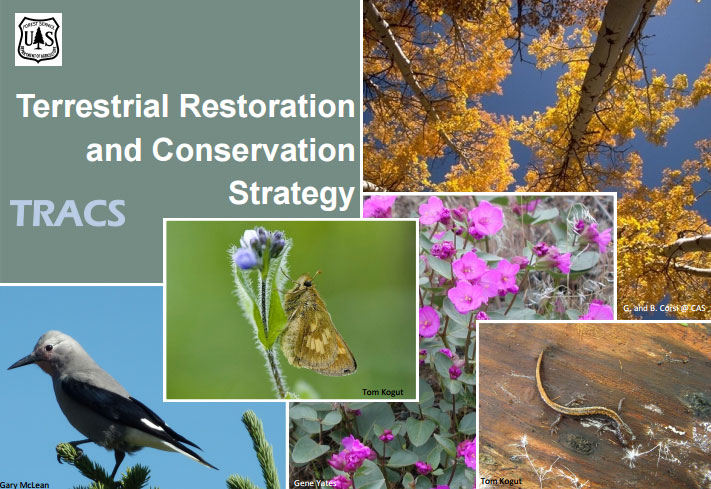 T R A C S is an acronym that stands for Terrestrial Restoration and Conservation Strategy.
