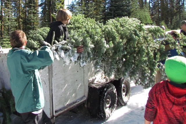 Young BoySscouts loading Christmas trees onto a truck in the snow