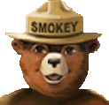 Image of Smokey Bear