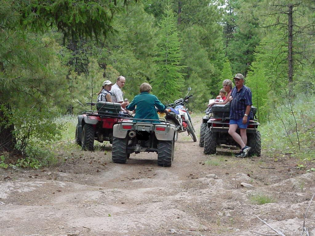 Image of multiple quad riders driving down a dirt road in a heavily wooded area