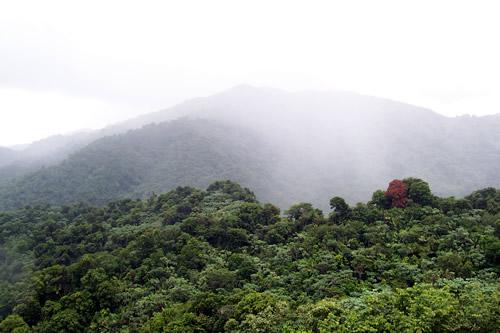 Scenery - heavy mist on mountains