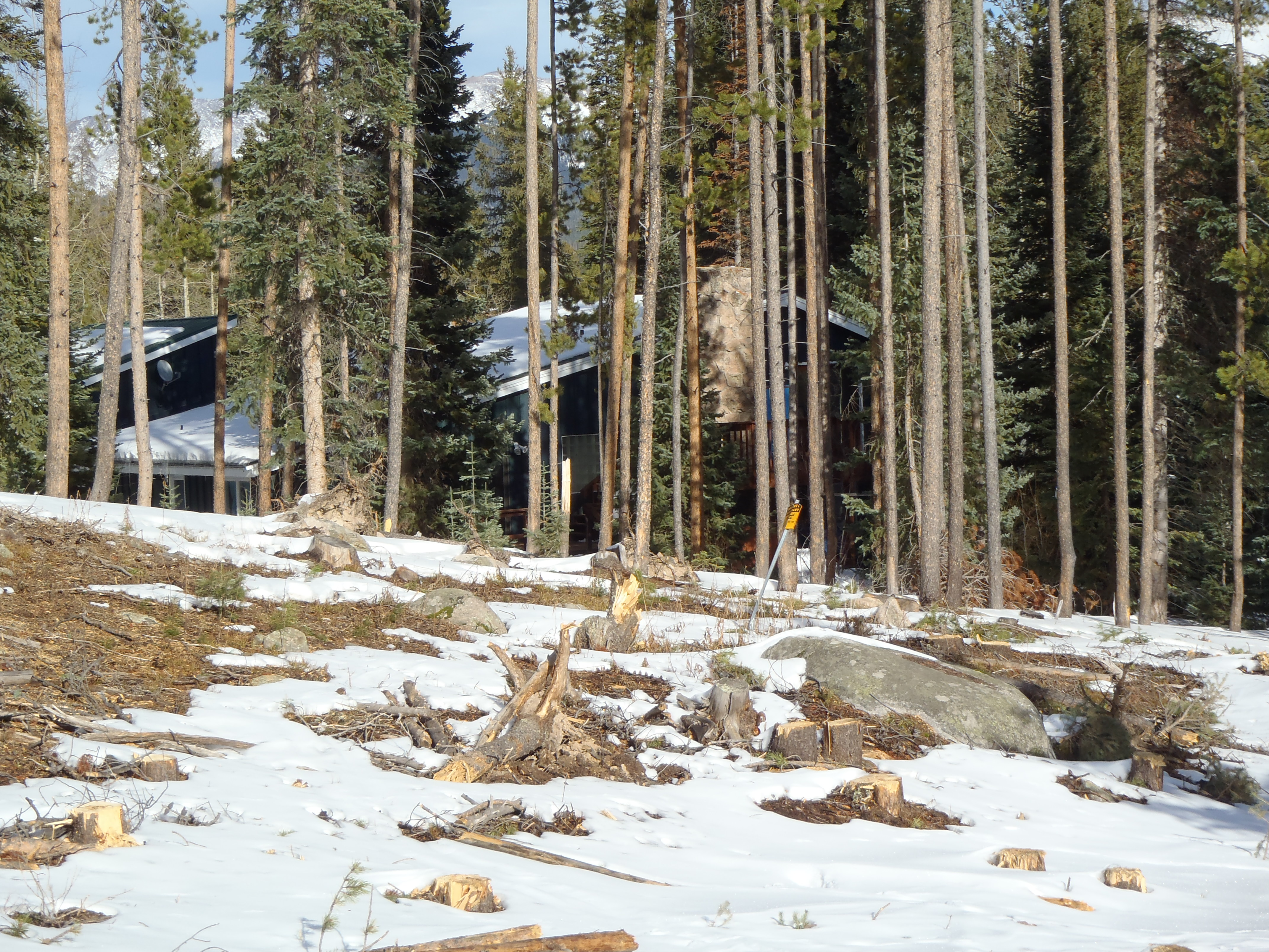 Trees have been removed along the national forest boundary and a home is visible.