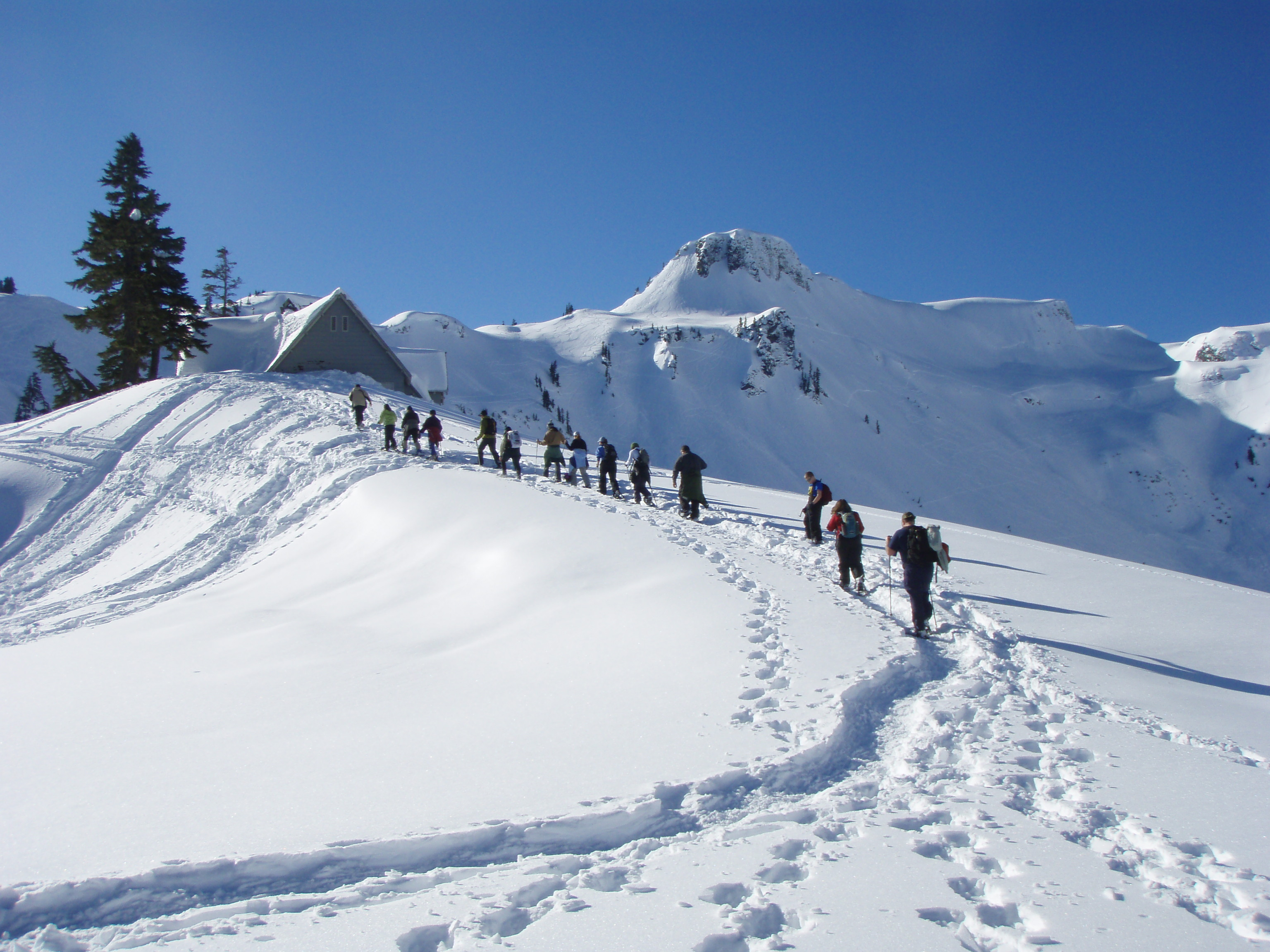 Guided Snowshoe Walk to Heather Meadows Visitor Center