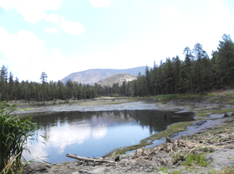 Hulsey Lake Drained 2011