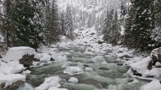 Icicle Creek in winter
