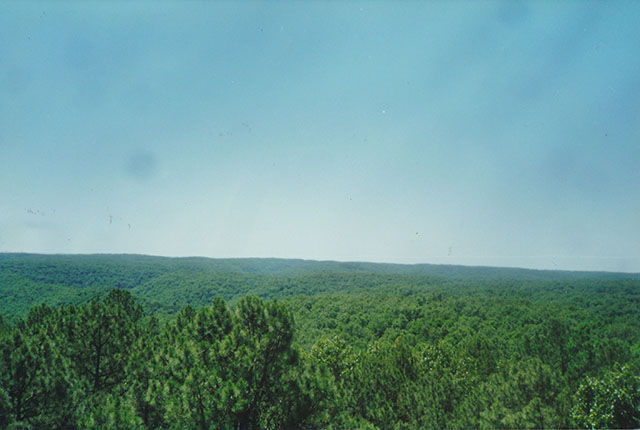 Piney Creek Wilderness View