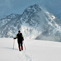 Guided Snowshoe Walks