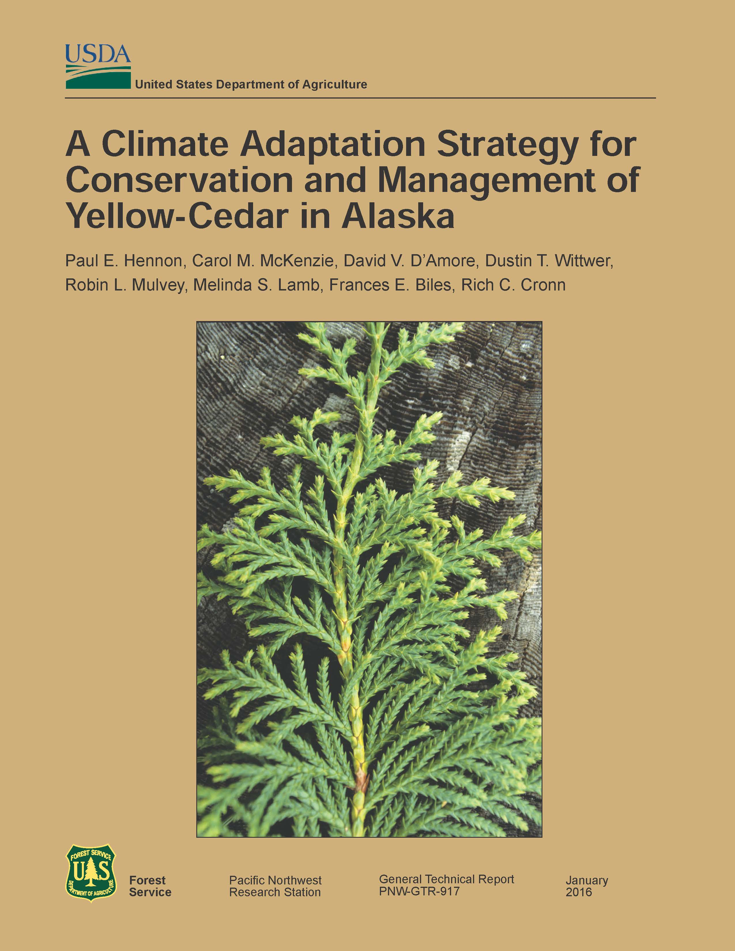 yellow-cedar strategy cover